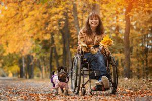 Der Beauftragte der Bundesregierung für die Belange behinderter Menschen