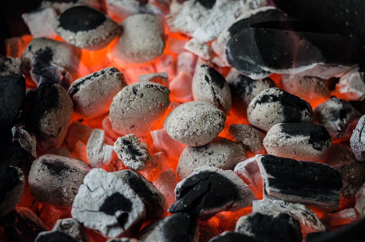 Kohle, Gas oder Elektro? Drei Grillarten im Vergleich