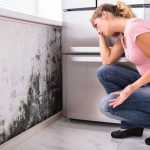 Schimmelpilz: Gefahr für Ihren Arbeitsplatz