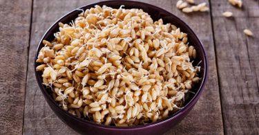 Vegetarische Rezepte mit Weizenkeimöl