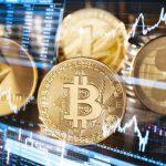 So finden Sie die richtige Brieftasche für ihre Kryptowährungen