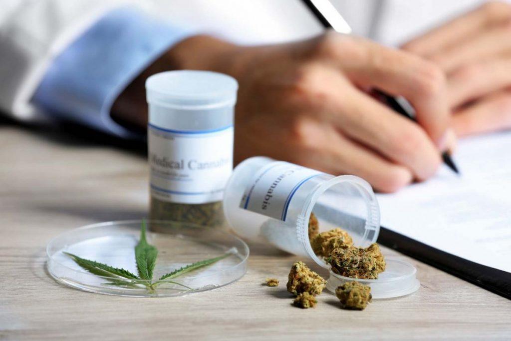 Cannabissamen – Rechtslage in Deutschland und anderen EU-Ländern