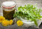 Diese 3 heimischen Heilpflanzen machen Sie fit für den Frühling